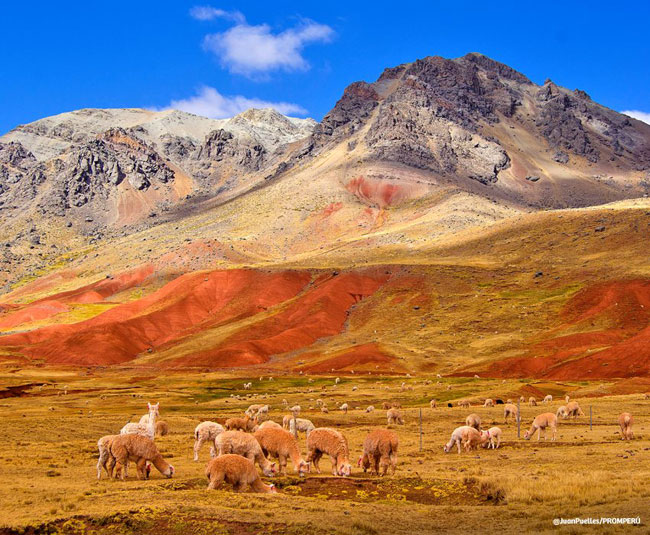 The Best Natural Attractions in Peru