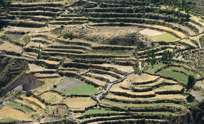 Colca Valley - Travel to Arequipa