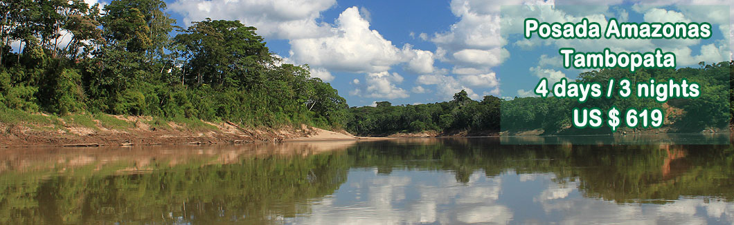 Jungle Tour in Tambopata